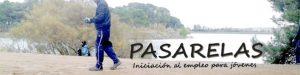 Pasarelas2016_port